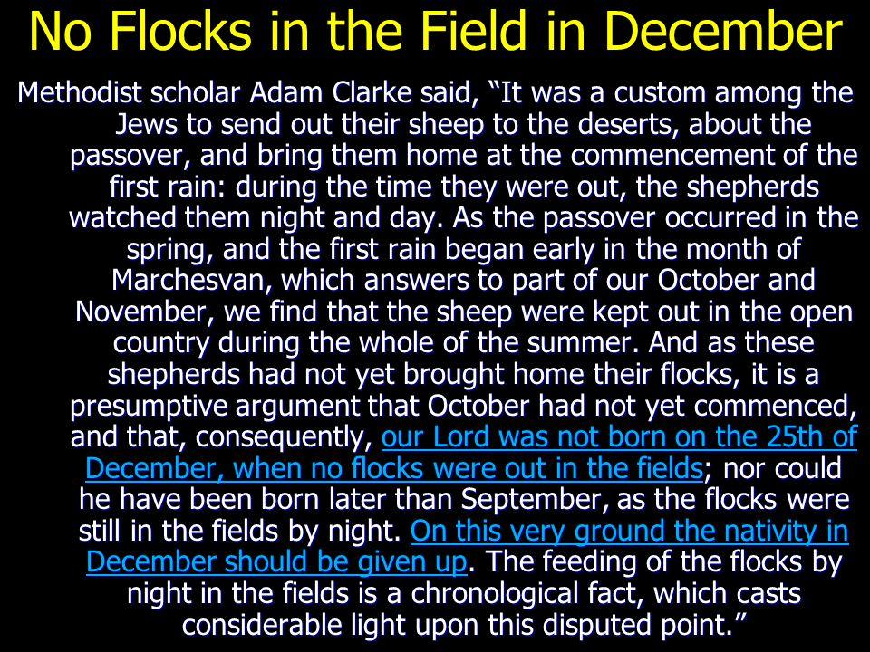 No Flocks in the Field in December