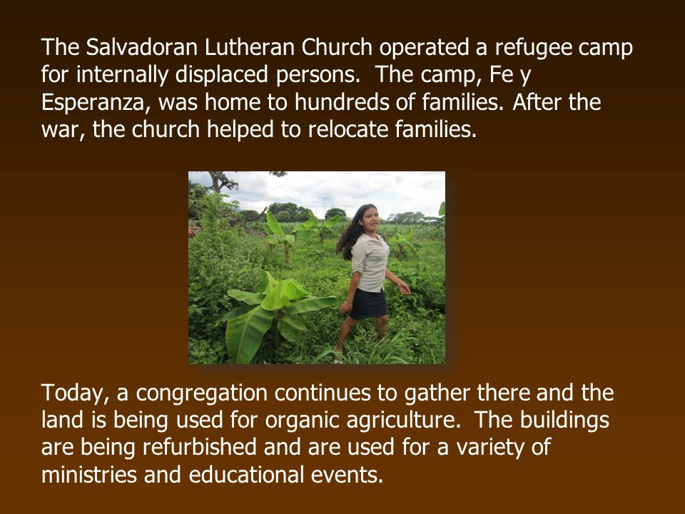 The Salvadoran Lutheran Church operated a refugee camp for internally displaced persons.