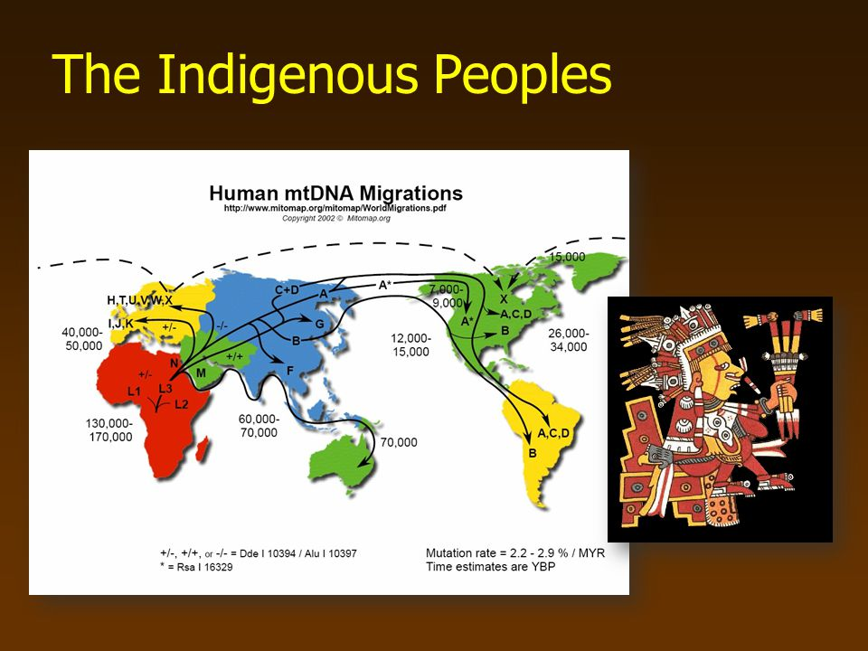 The Indigenous Peoples