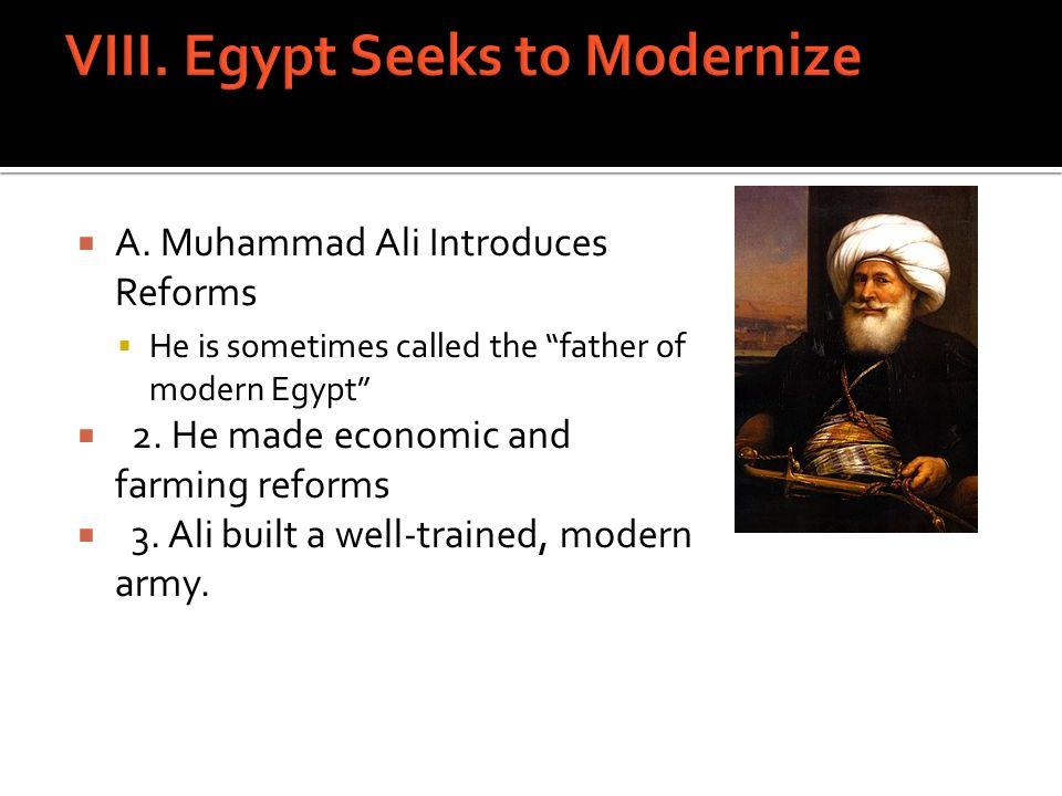 VIII. Egypt Seeks to Modernize