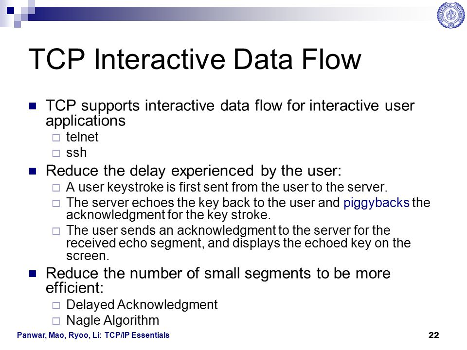 TCP Interactive Data Flow