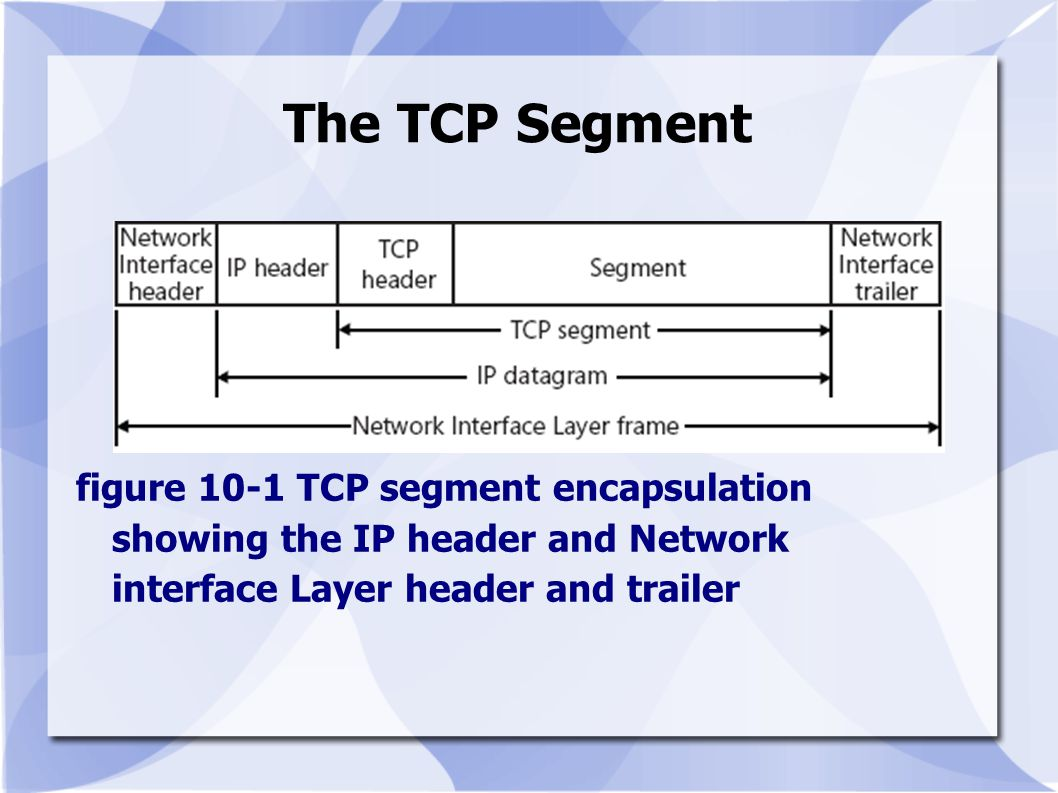 The TCP Segment figure 10-1 TCP segment encapsulation showing the IP header and Network interface Layer header and trailer.