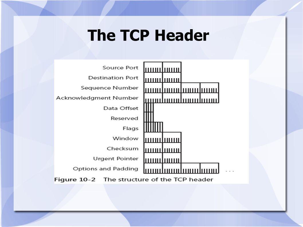 The TCP Header
