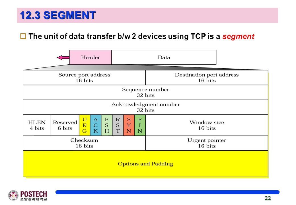 12.3 SEGMENT The unit of data transfer b/w 2 devices using TCP is a segment