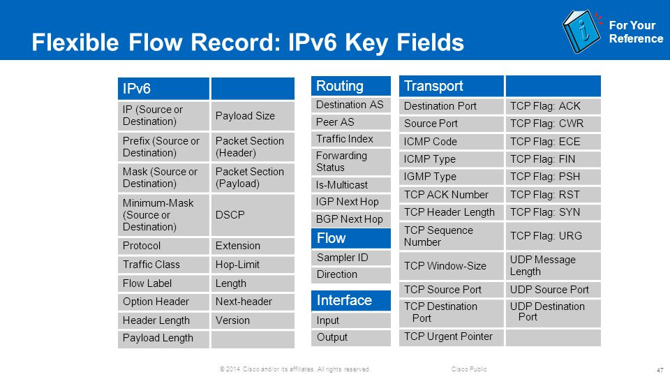 Flexible Flow Record: IPv6 Key Fields