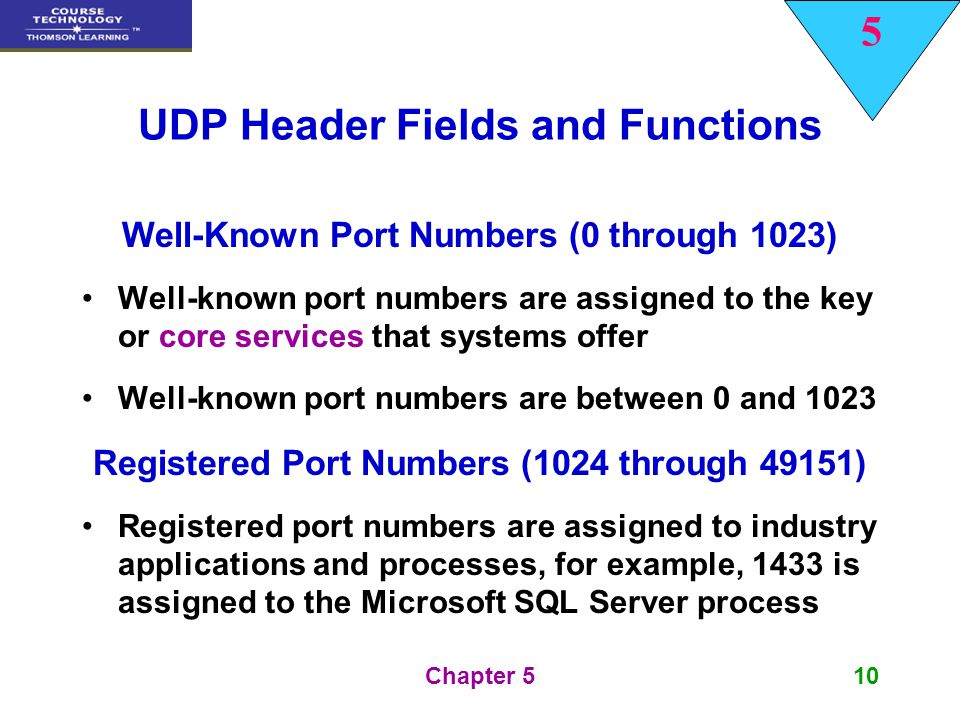 UDP Header Fields and Functions