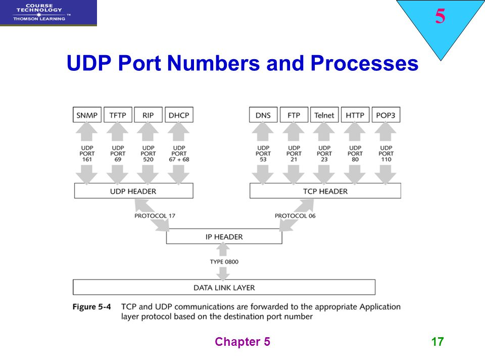 UDP Port Numbers and Processes