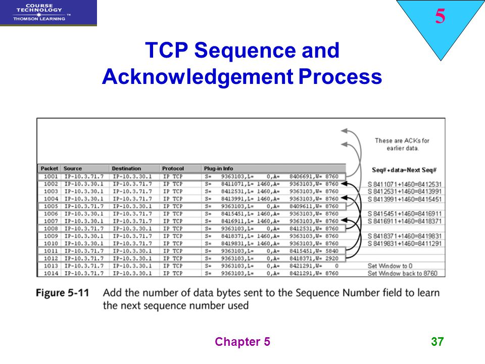 TCP Sequence and Acknowledgement Process
