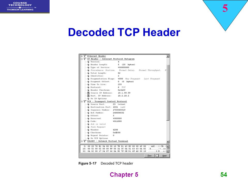 Decoded TCP Header Chapter 5
