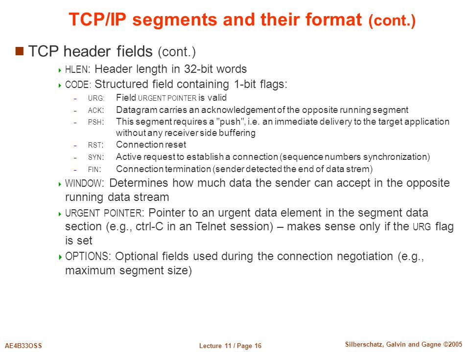 TCP/IP segments and their format (cont.)