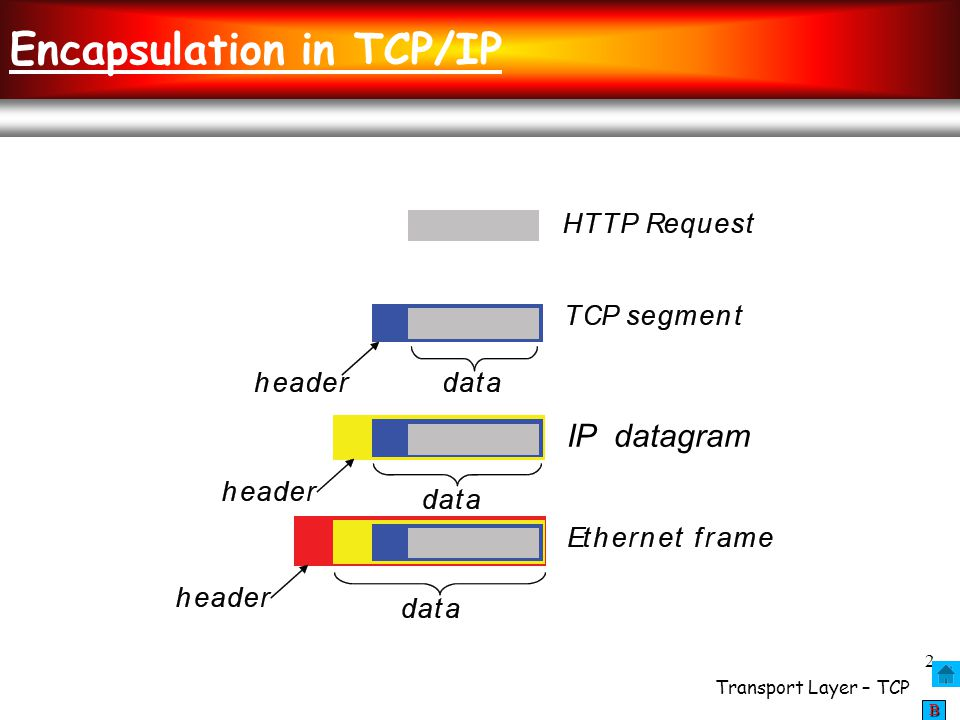 Encapsulation in TCP/IP