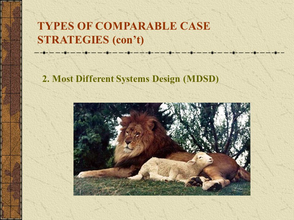 TYPES OF COMPARABLE CASE STRATEGIES (con't)