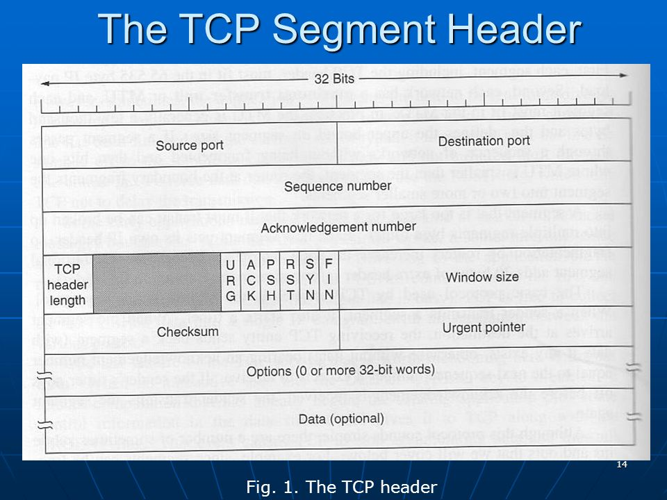 The TCP Segment Header Fig. 1. The TCP header