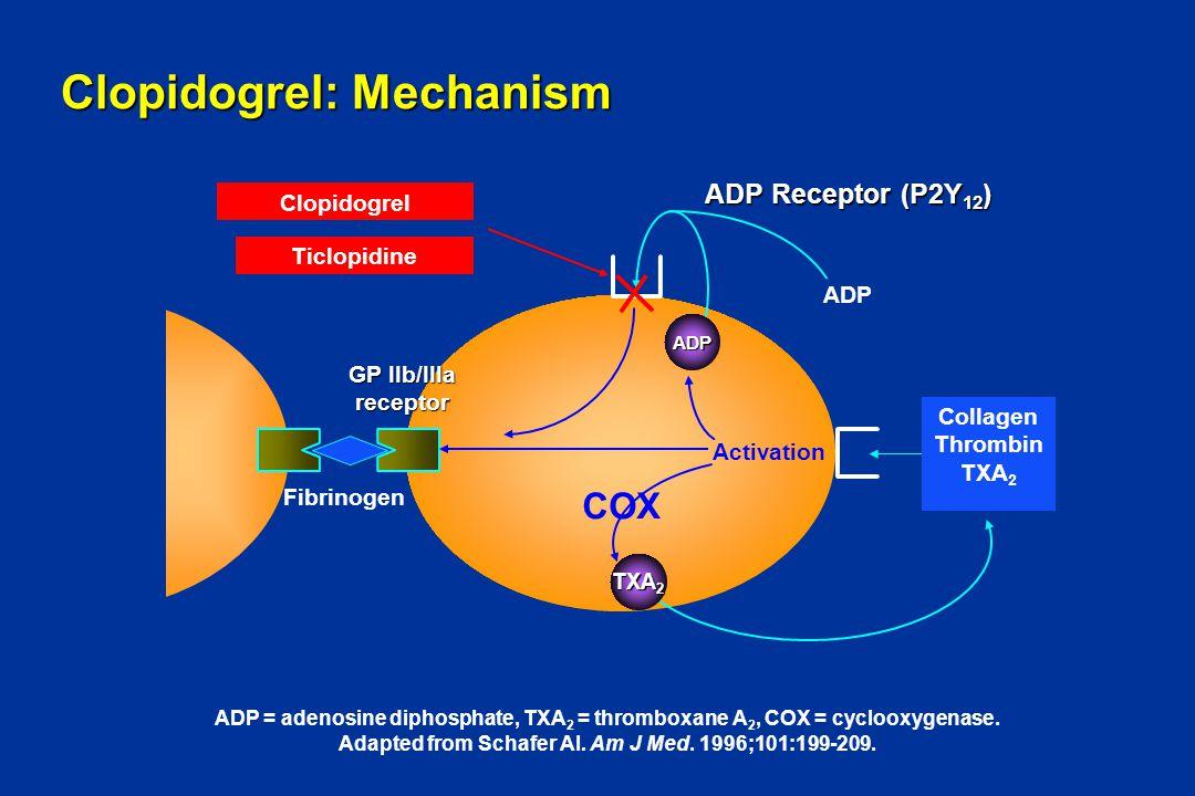 Clopidogrel: Mechanism