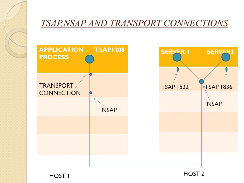 TSAP,NSAP AND TRANSPORT CONNECTIONS