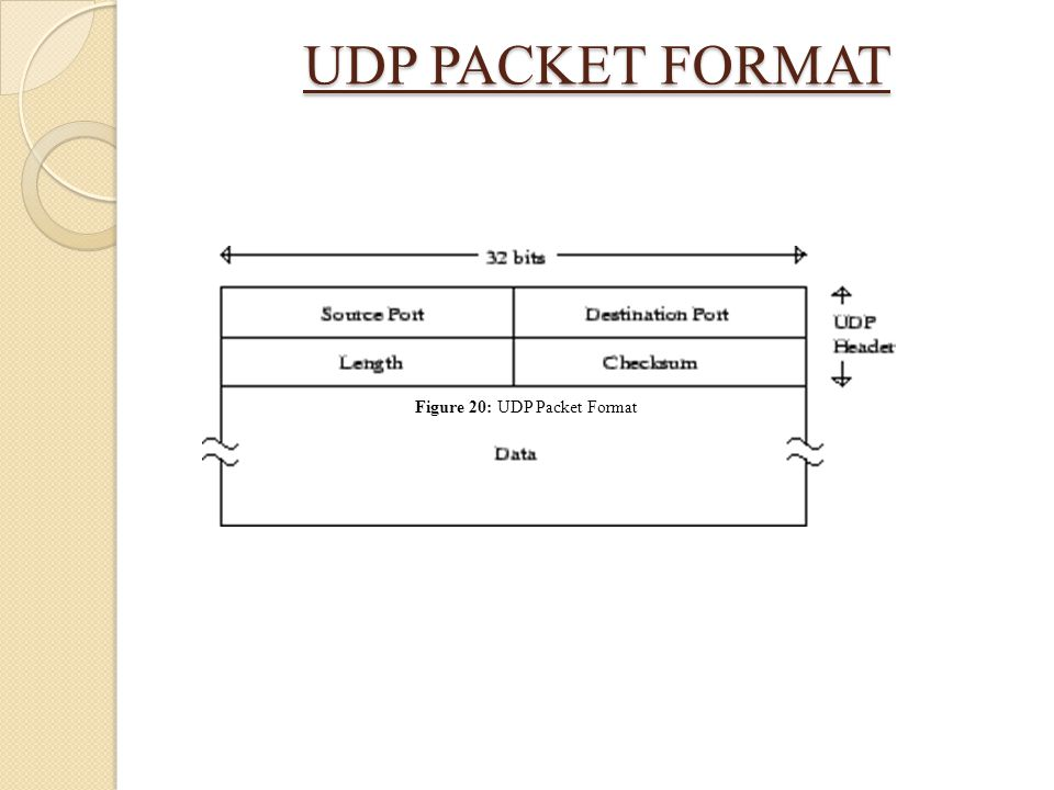 Figure 20: UDP Packet Format