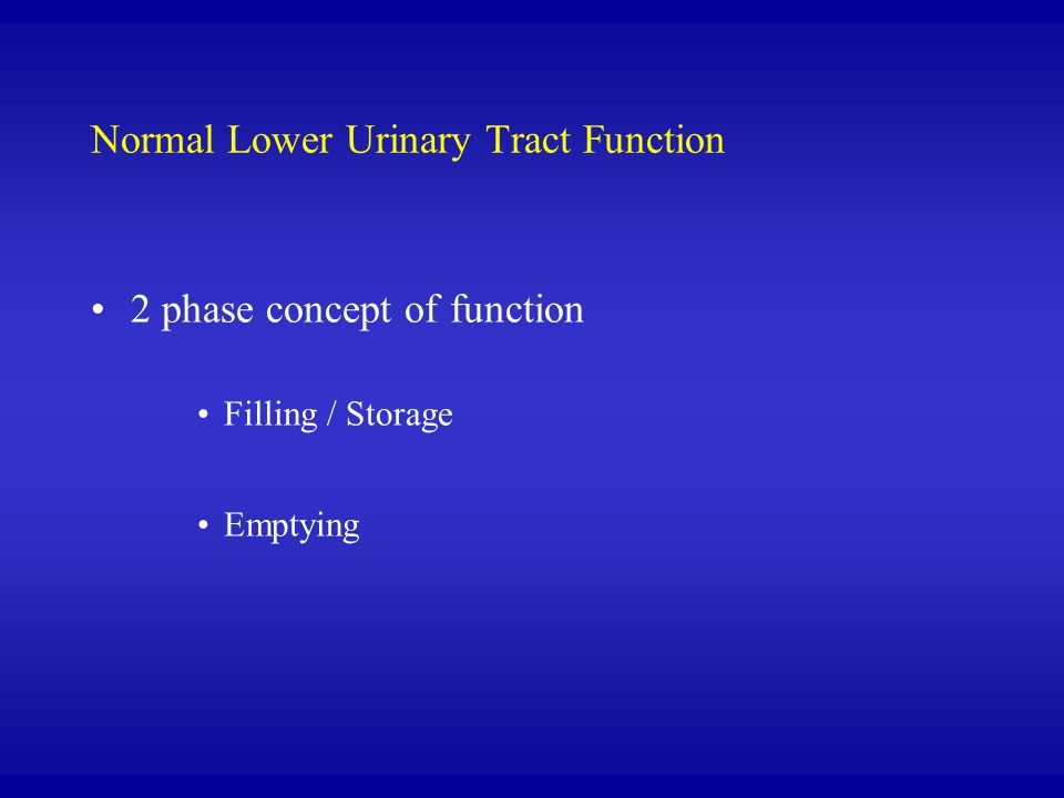 Normal Lower Urinary Tract Function
