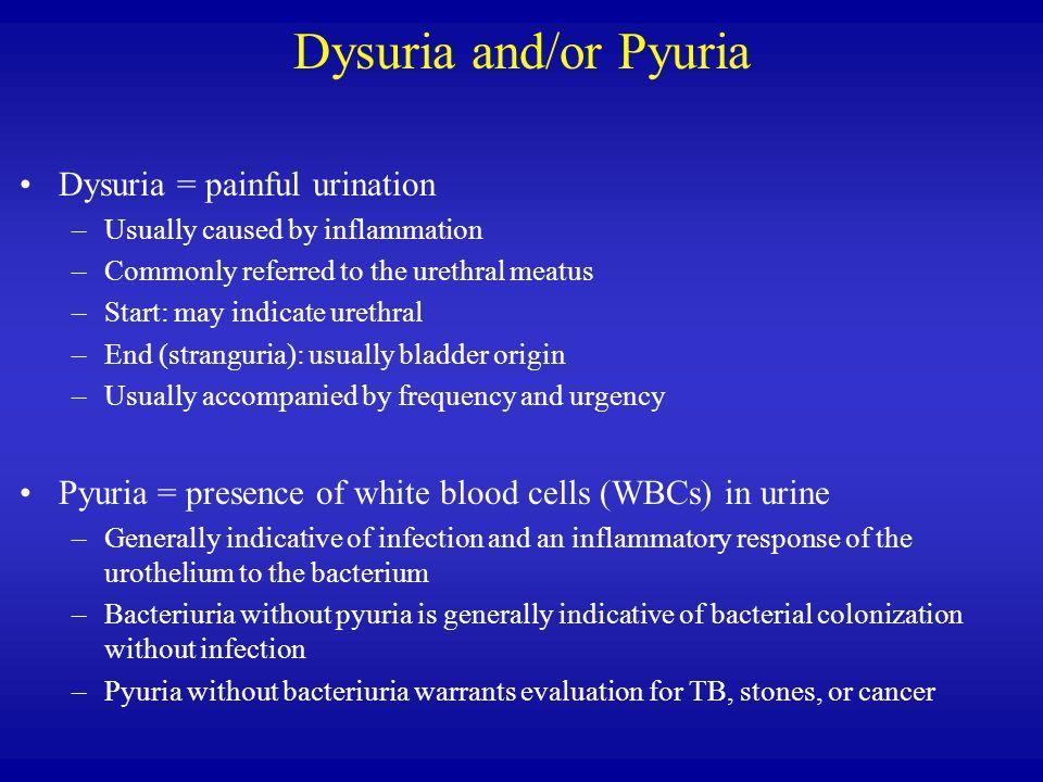 Dysuria and/or Pyuria Dysuria = painful urination