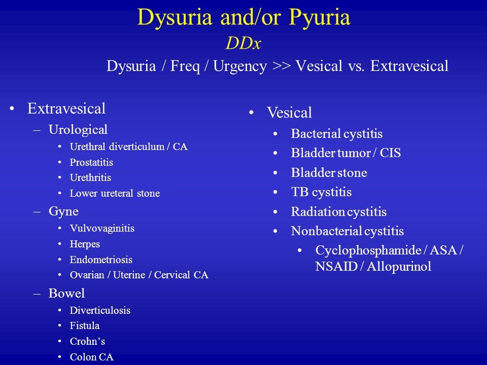 Dysuria and/or Pyuria DDx