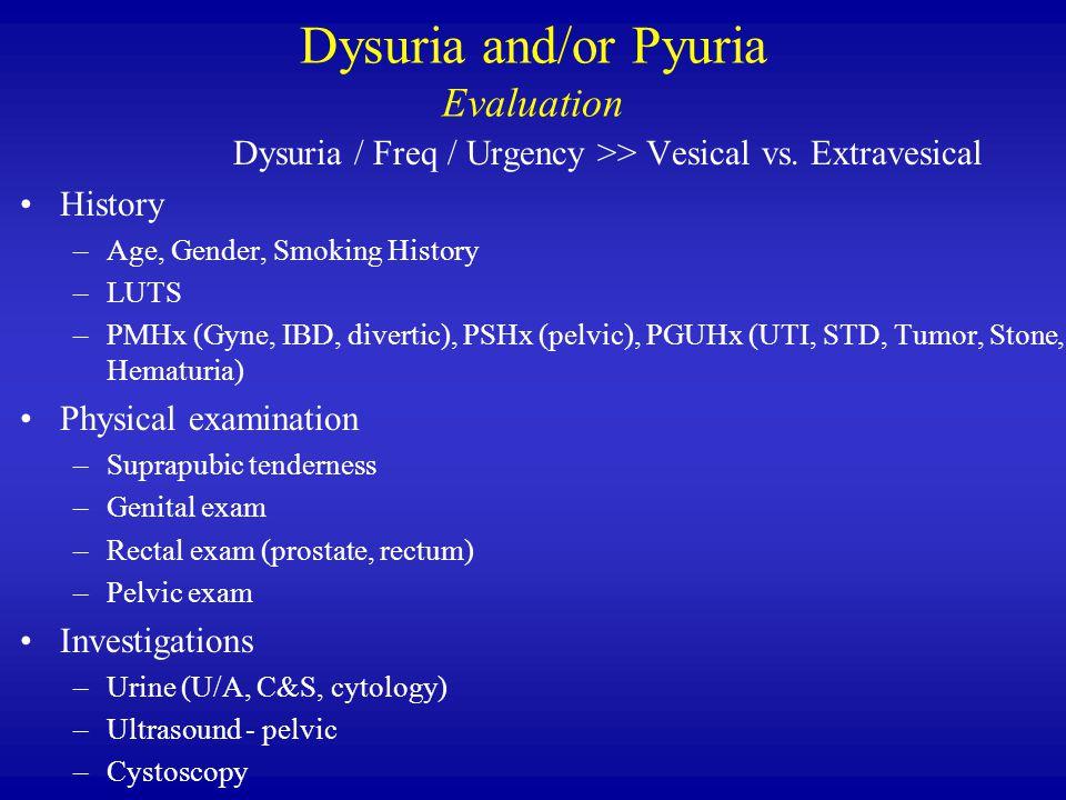 Dysuria and/or Pyuria Evaluation