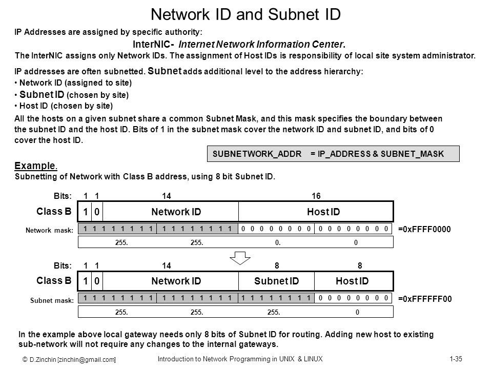 Network ID and Subnet ID