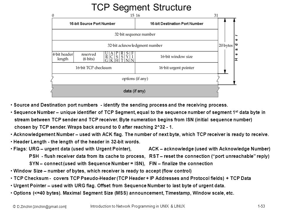 TCP Segment Structure Source and Destination port numbers - identify the sending process and the receiving process.