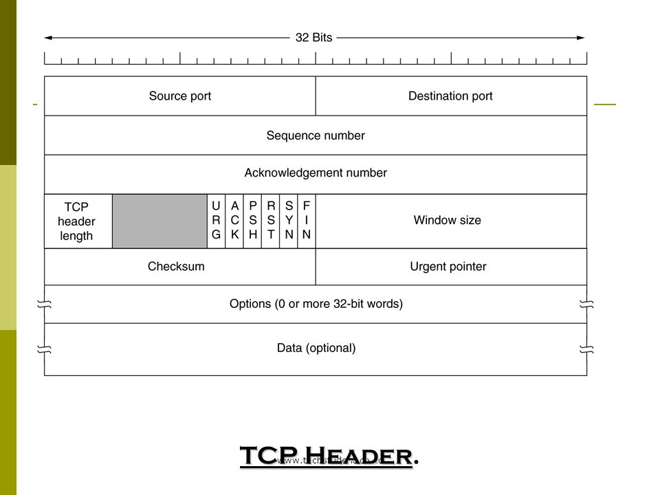 TCP Header. www.techstudent.co.cc