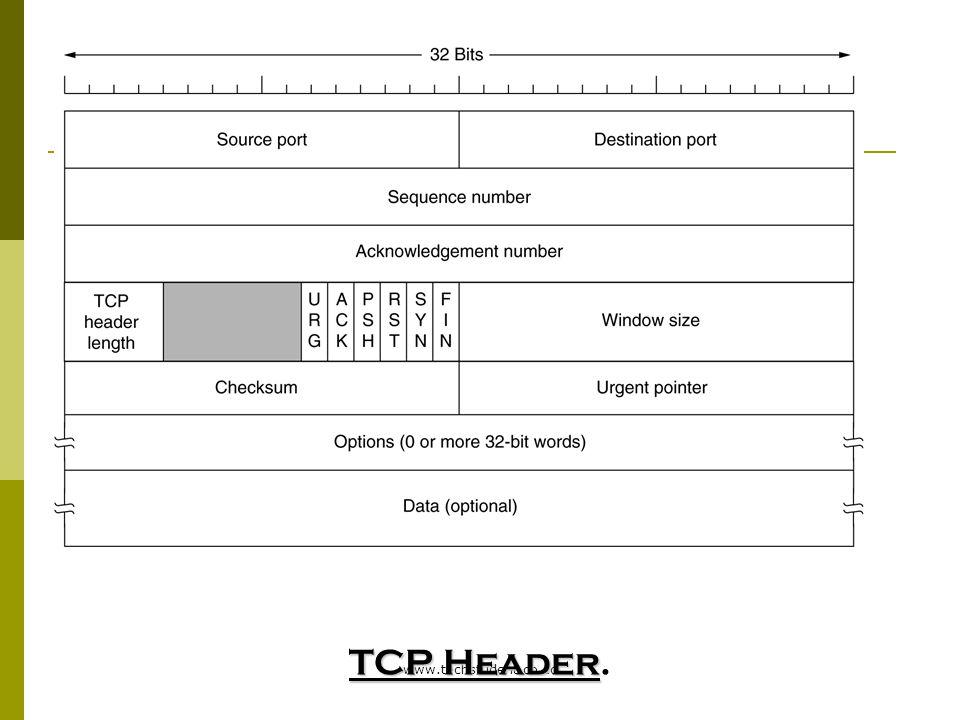 TCP Header. www.techstudent.co.cc