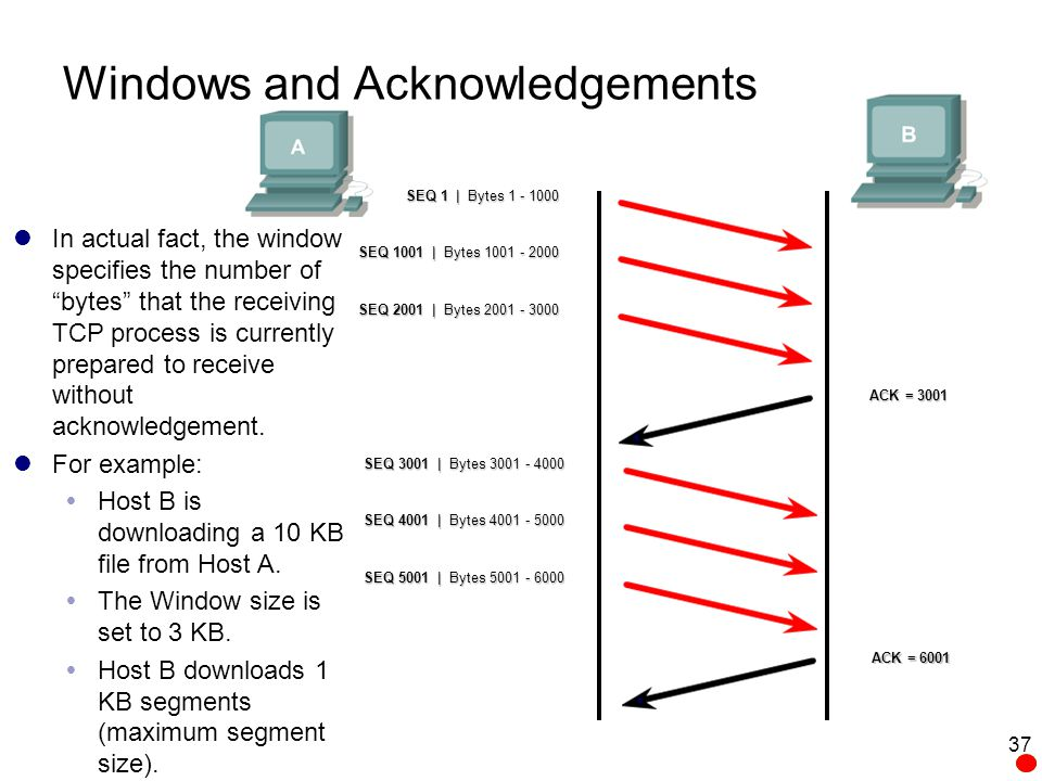 Windows and Acknowledgements