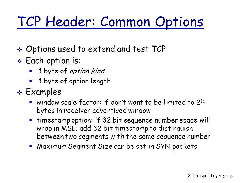 TCP Header: Common Options