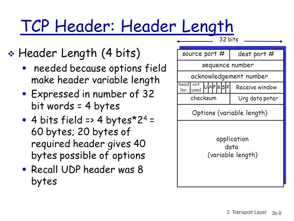 TCP Header: Header Length