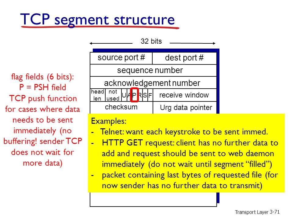 TCP segment structure flag fields (6 bits): P = PSH field