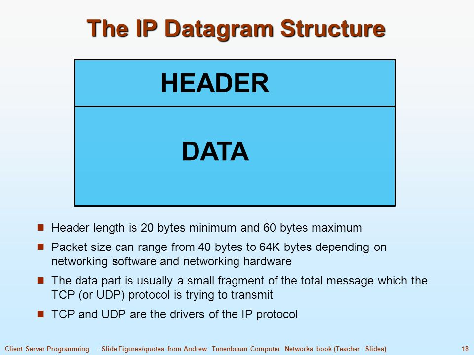 The IP Datagram Structure