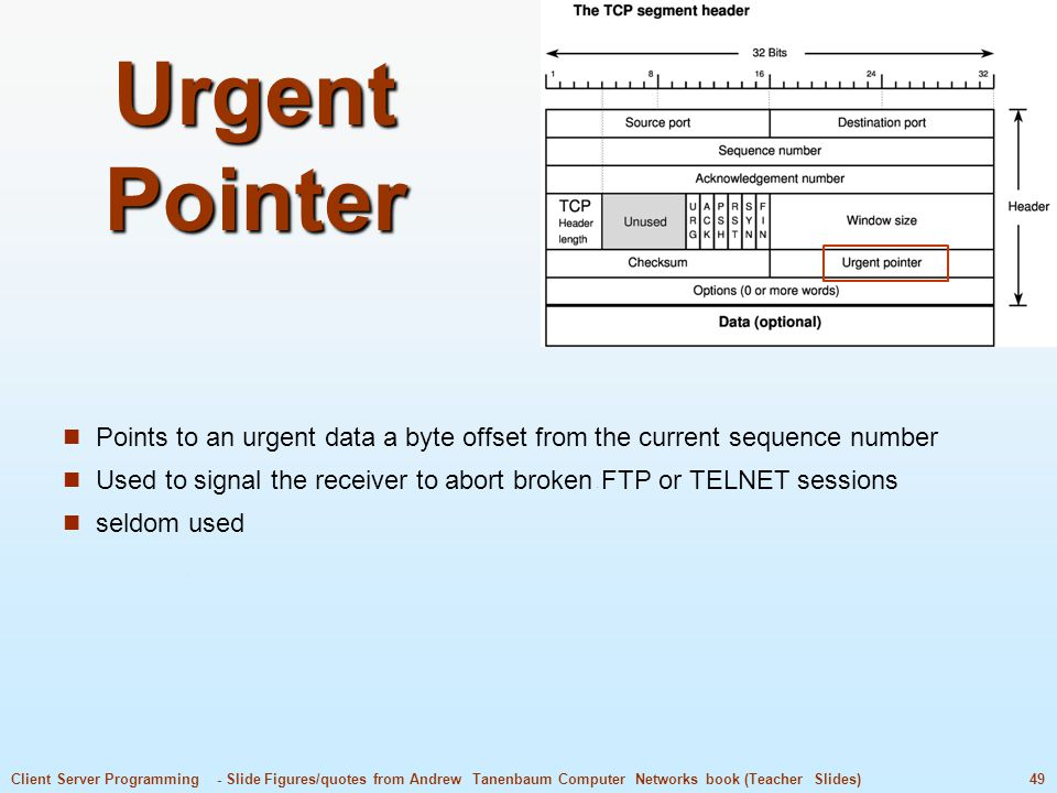 Urgent Pointer Points to an urgent data a byte offset from the current sequence number.