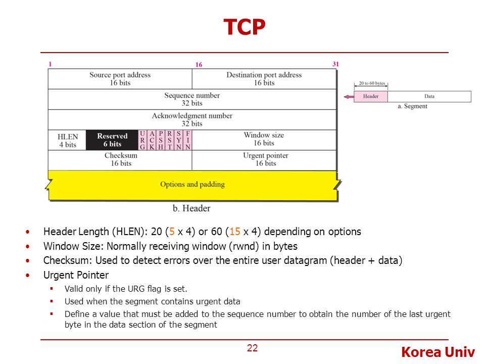 TCP Header Length (HLEN): 20 (5 x 4) or 60 (15 x 4) depending on options. Window Size: Normally receiving window (rwnd) in bytes.
