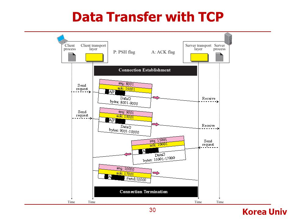 Data Transfer with TCP