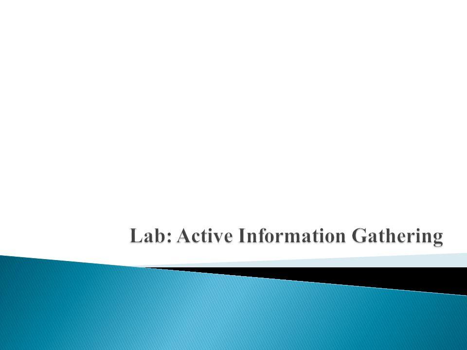 Lab: Active Information Gathering