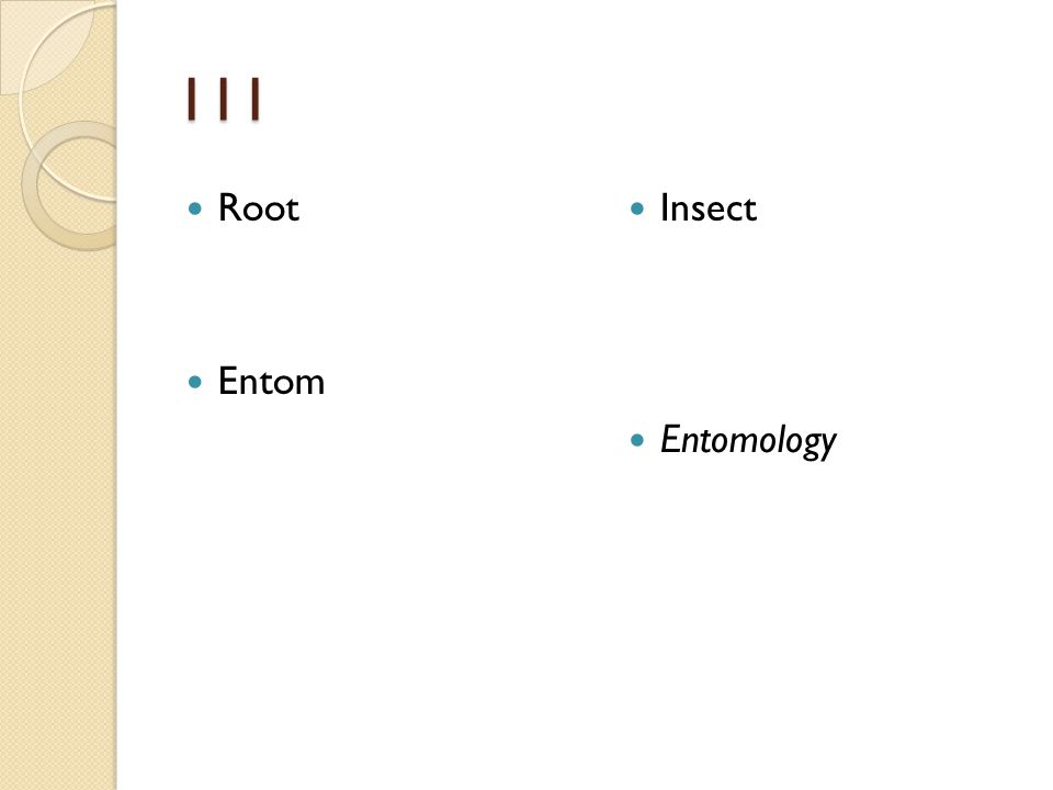 111 Root Entom Insect Entomology