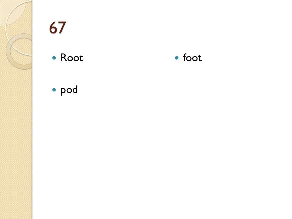 67 Root pod foot