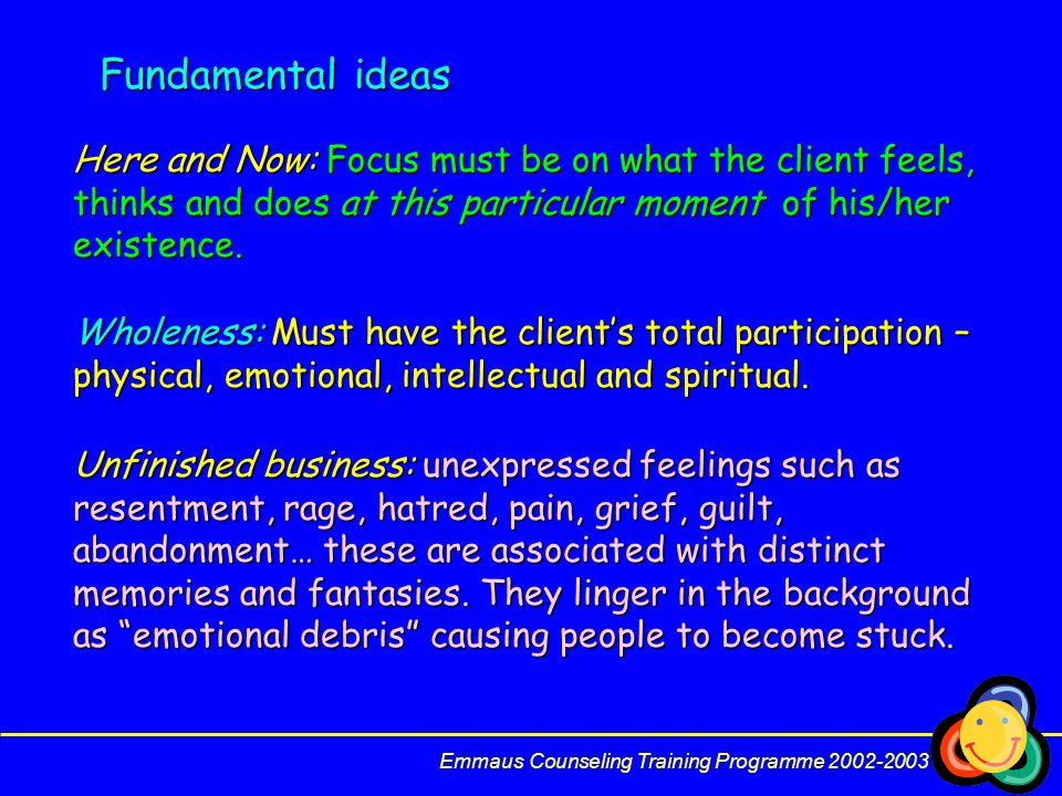 Fundamental ideas Here and Now: Focus must be on what the client feels, thinks and does at this particular moment of his/her existence.