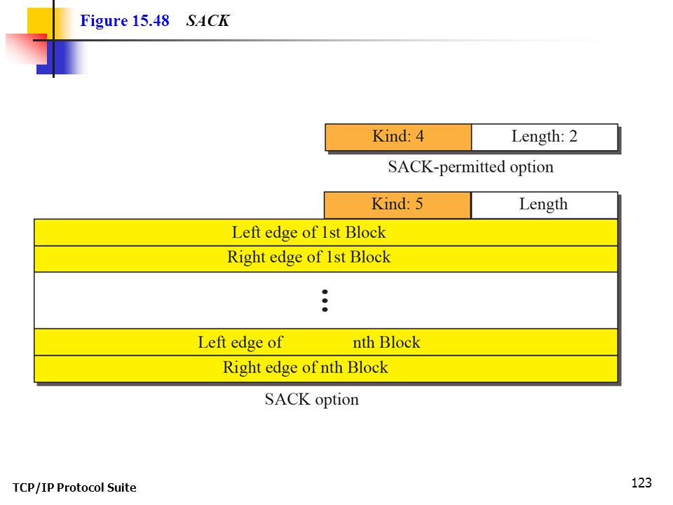 Figure 15.48 SACK TCP/IP Protocol Suite