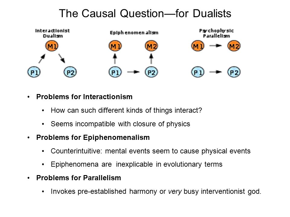 The Causal Question—for Dualists