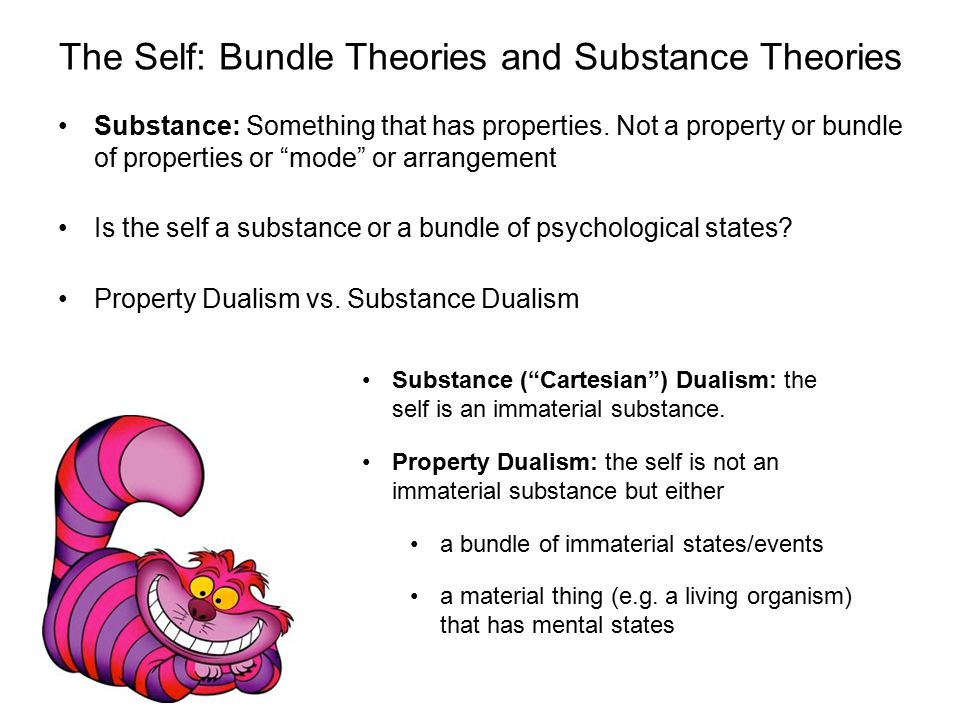 The Self: Bundle Theories and Substance Theories