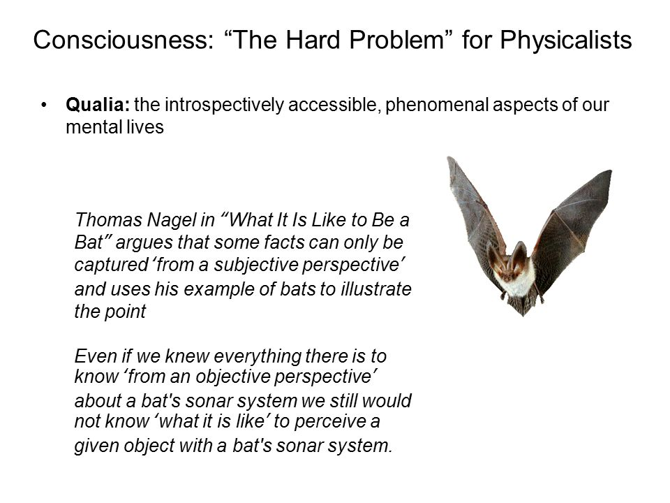 Consciousness: The Hard Problem for Physicalists