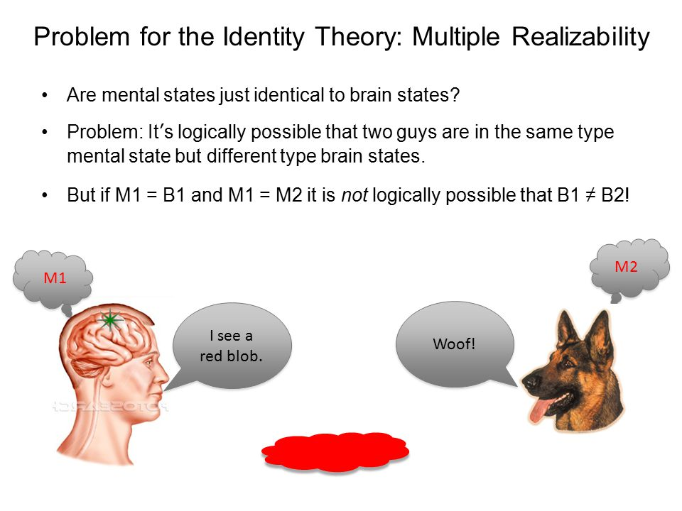 Problem for the Identity Theory: Multiple Realizability