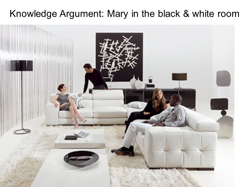 Knowledge Argument: Mary in the black & white room