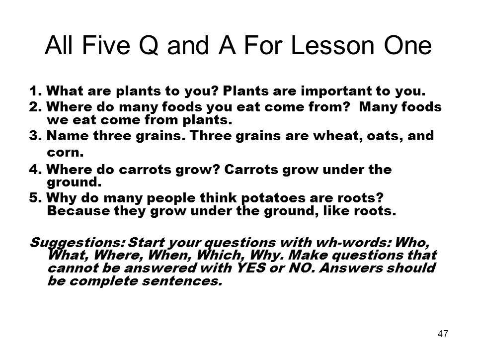 All Five Q and A For Lesson One