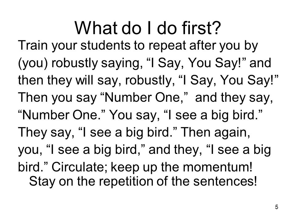 What do I do first Train your students to repeat after you by