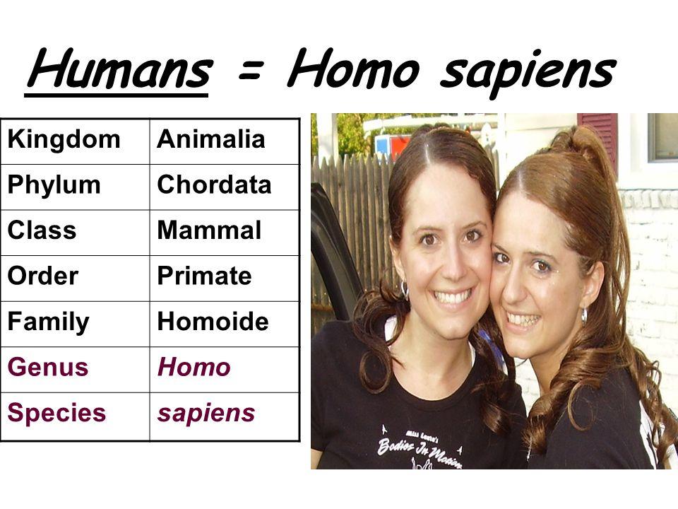 Humans = Homo sapiens Kingdom Animalia Phylum Chordata Class Mammal