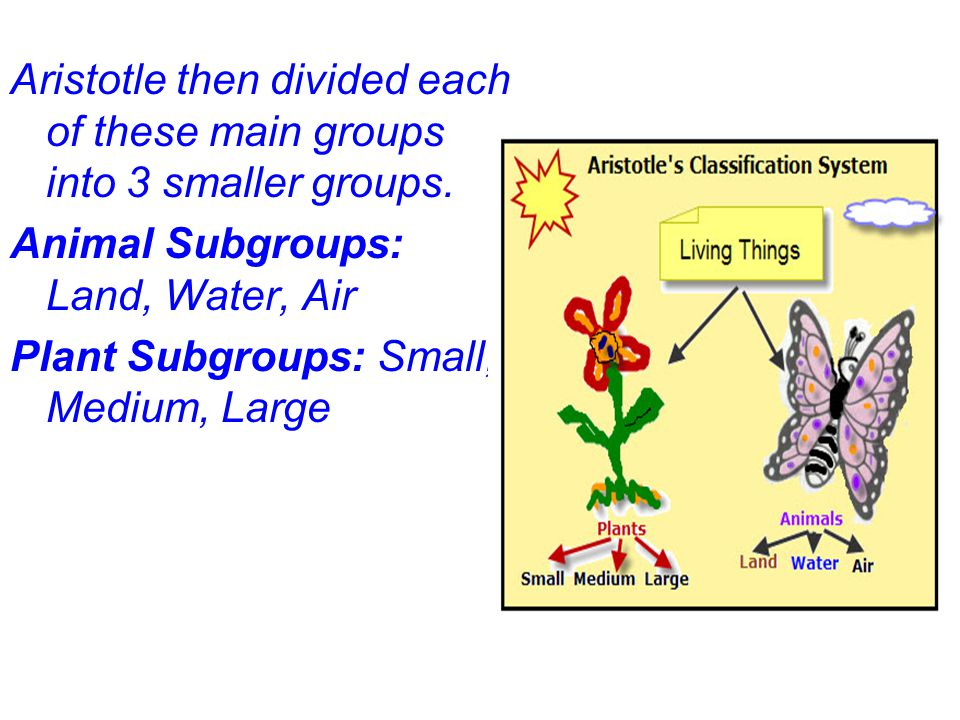 Aristotle then divided each of these main groups into 3 smaller groups